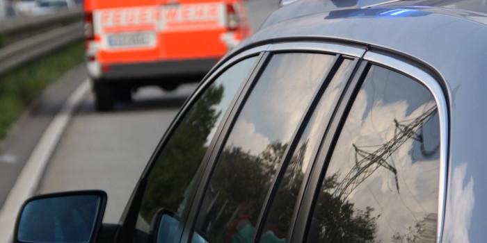 Pferde auf der ICE-Strecke verursachen Verspätungen und Feuerwehreinsatz