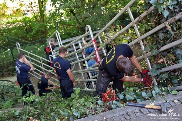 Wildschweine im Kurpark halten Feuerwehr und Polizei während 25-Stunden-Lauf auf Trab