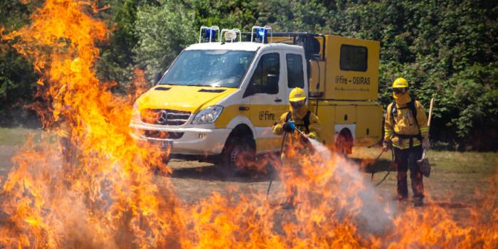 Hohe Waldbrandgefahr: Umweltministerium ruft zweithöchste Alarmstufe aus