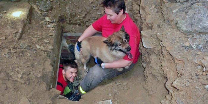 Feuerwehr befreit Hund aus Regenwasserschacht