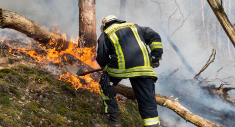 Rauchen und offenes Feuer ist im Wald von Mai bis Oktober strikt verboten