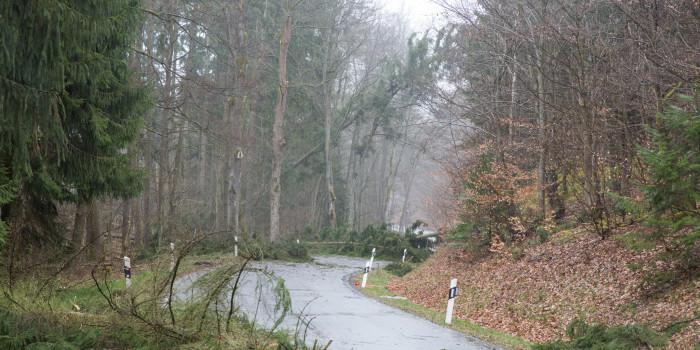 """Sturm """"Niklas"""" tobt in Wiesbaden und Umgebung – 2 Verletzte Feuerwehrleute"""