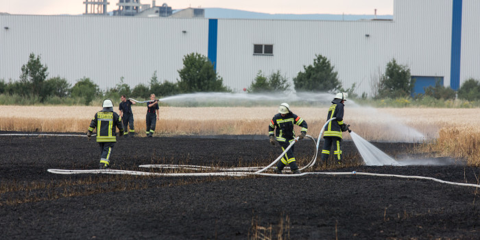 500 Quadratmeter Getreidefeld in Kastel in Flammen