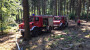 Flächenbrand auf der Platte frühzeitig entdeckt – möglicher Waldbrand verhindert
