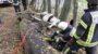 Feuerwehr befreit eingeklemmtes Pferd in Frauenstein