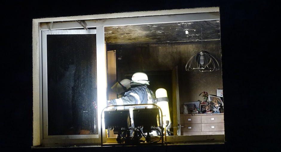 Feuerwehr rettet zwei Katzen bei Zimmerbrand