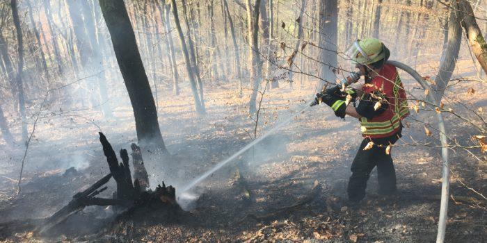 Waldbrand am Neroberg beschäftigt die Feuerwehr