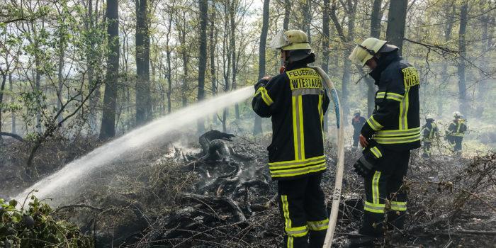 Feuerwehr-Großeinsatz wegen Waldbrand in Rambach