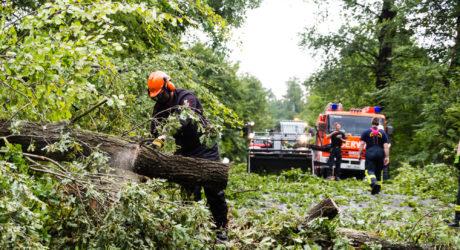 Gewitterzelle verursacht starke Sturmschäden – Feuerwehren im stundenlagen Dauereinsatz