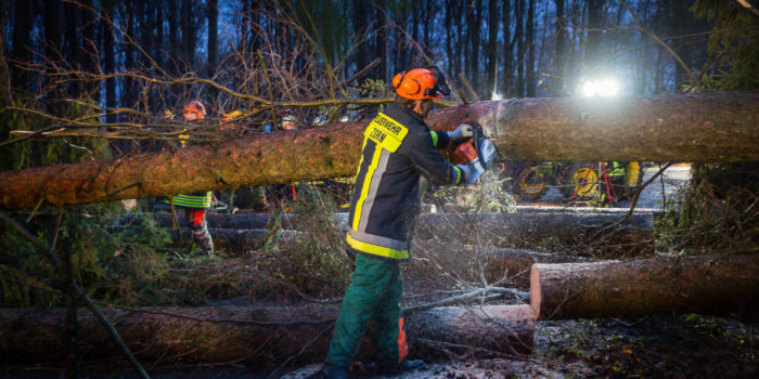 Zahlreiche Bäume stürzen durch Orkanböen um – Baugerüst auf der Wilhelmstraße droht umzustürzen