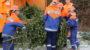Jugendfeuerwehren und ELW sammeln Weihnachtsbäume ein
