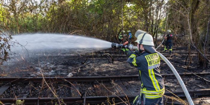 Brennendes Unterholz im Bereich des Bahnhof Kastel