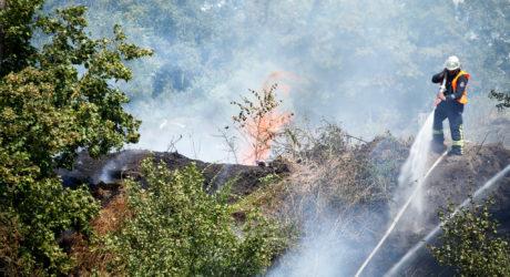 Böschungsbrand im Mainspitzdreieck greift auf Lager der Autobahnmeisterei über