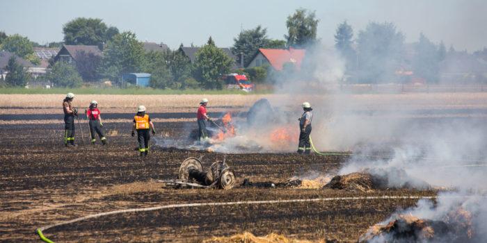 10.000 Quadratmeter Acker brennen in Hattersheim