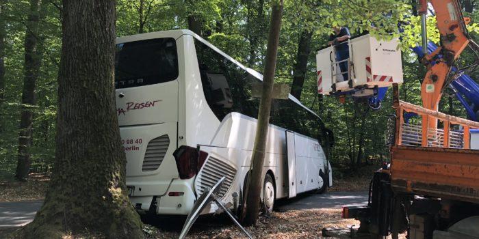 Drei Verletzte bei Busunfall am Neroberg