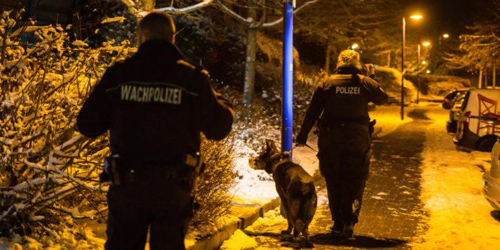 21-Jähriger flieht vor drohender Abschiebung – Polizei sucht mit Hubschrauber und Hunden