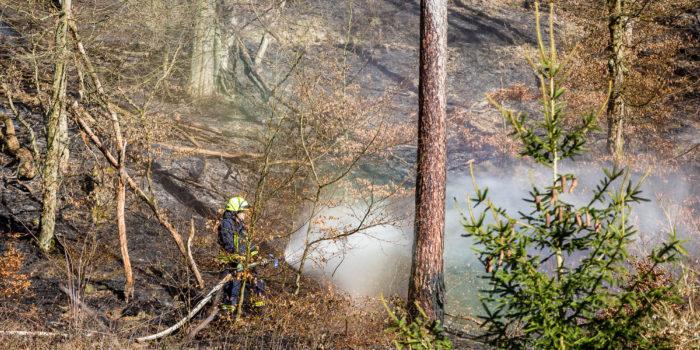 Größerer Waldbrand im Steilhang fordert Feuerwehren in Schlangenbad heraus