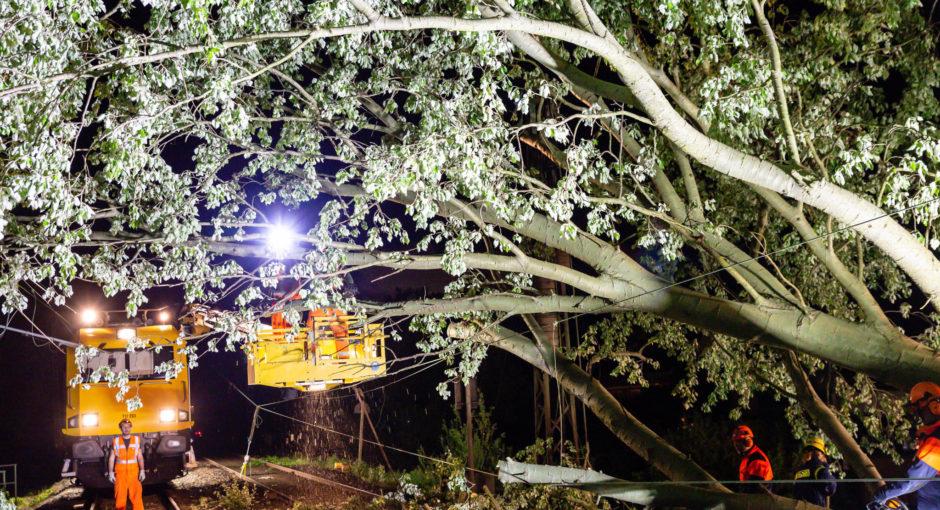 Umgestürzter Baum legt Bahnverkehr bei Kriftel lahm – weitere Sturmeinsätze im Rhein-Main-Gebiet