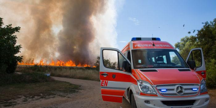 120.000 Quadratmeter Feld zwischen Hochheim und Kostheim in Flammen – Feuerwehr rettet eingeschlossene Menschen
