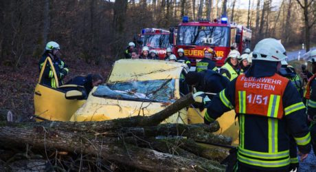 Autofahrer während der Fahrt durch Baum getroffen und eingeklemmt